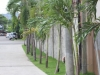 pathway to Strawberry Residences Cebu